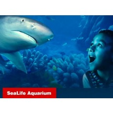 I-Drive 360: SEA LIFE Aquarium